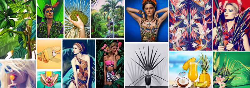 mood-board-w-paris-brunch-couture-coco-tropical-menu